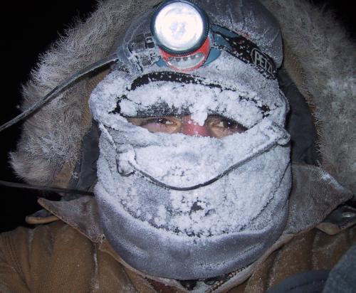 Pure Cold