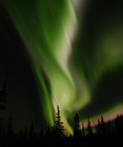 Great aurora
