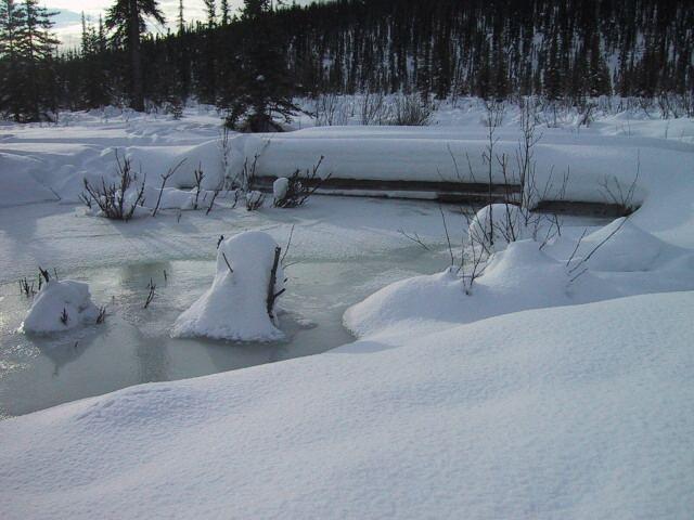 2/15 ice level